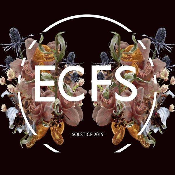 ECFS 2017